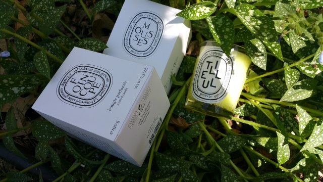 Diptyque candles from the Herbal family: Foin Coupe, Mousses, and Tilleul