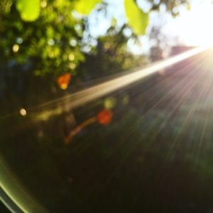 Луч неповторимого, яркого, полного жизни украинского солнца. Красота, от которой лучше защититься.