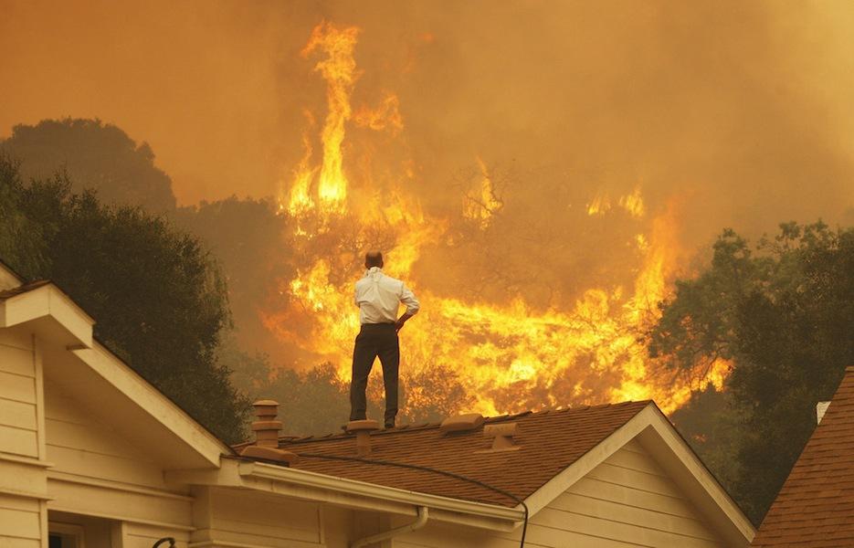 wildfireoriginal-4