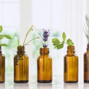 Oils & Herbs