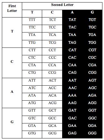 tcag_symmetry1