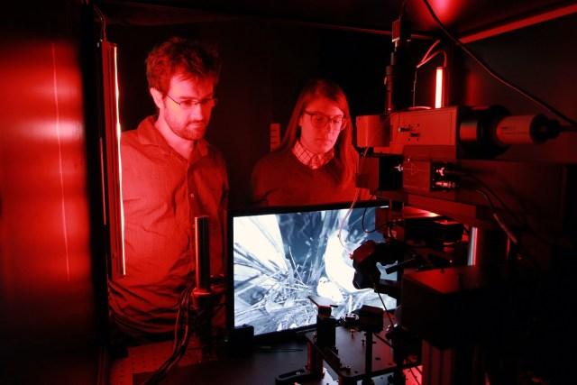 Brain Observatory research