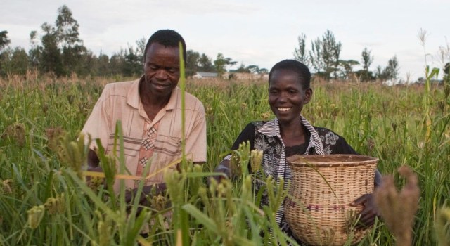 Farm in Africa