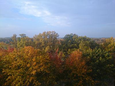 Eklandskapet sett från vår balkong.