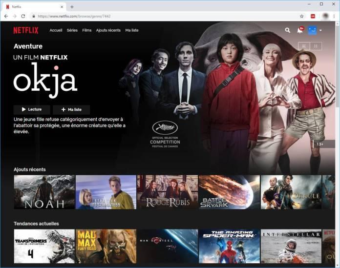 Code Secret Netflix - Accéder aux films et séries cachés - URL avec Code Secret