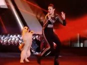 Britain's Got Talent Final - Pudsey dog dancing