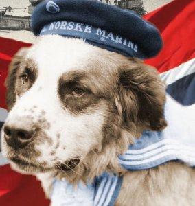 Bamse Hero Dog - World War 2