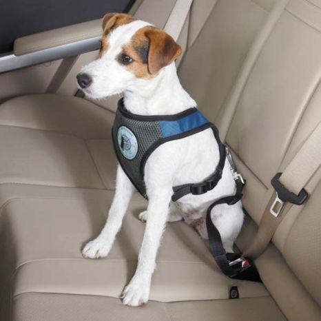 Dog Harness for Car