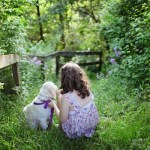 Dog Sitting On Grass With Girl