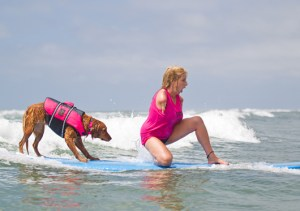 Dog Surfing with Disabled Woman