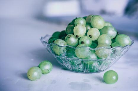 Grapes - Cosmodoggyland