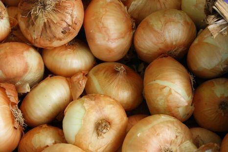 Onions -Cosmodoggyland