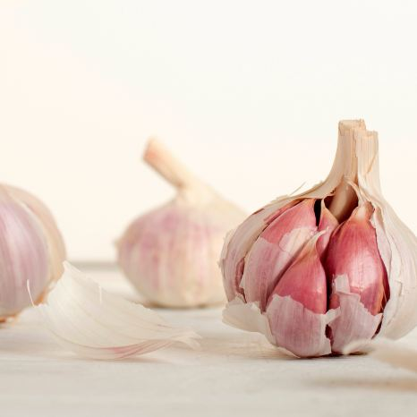 Garlic - Cosmodoggyland