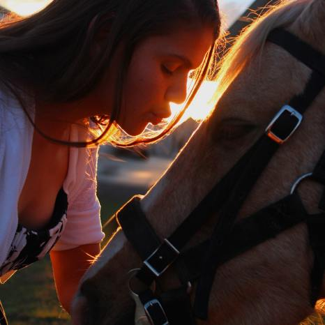 Young woman kissing horse
