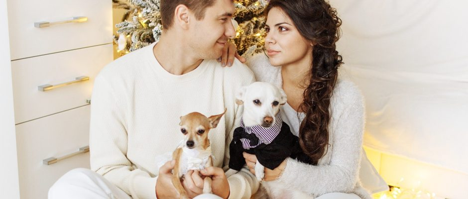 Couple with dogs. Create the perfect profile for online dating