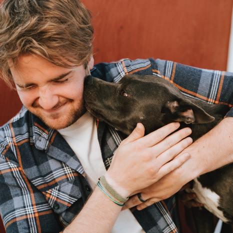 Dog kissing young man
