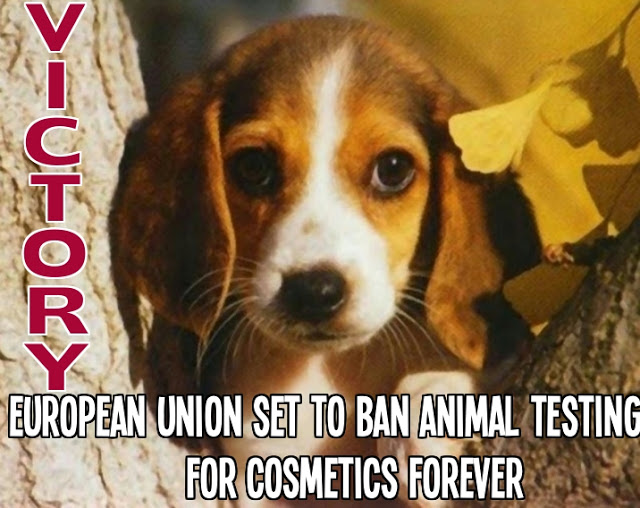 European Union (EU) bans animal testing on cosmetics