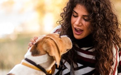 """""""""""Dog Talk"""" and the Universal, Human and Canine Energy Fields"""