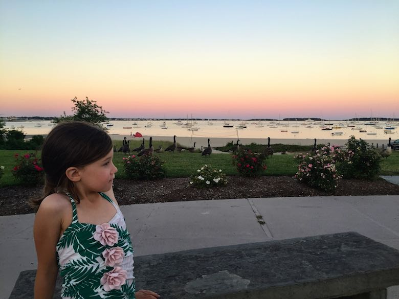 Profile of a little girl overlooking Lewis Bay in Hyannis, at the JFK Memorial, during a beautiful sunset, in the company of some geese behind some flower beds