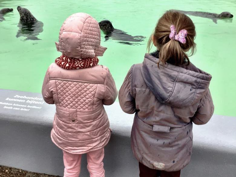 Achteraanzicht van twee meisjes in winterjas die kennismaken met de zeehonden in Ecomare tijdens een najaarsuitje in Texel met het gezin
