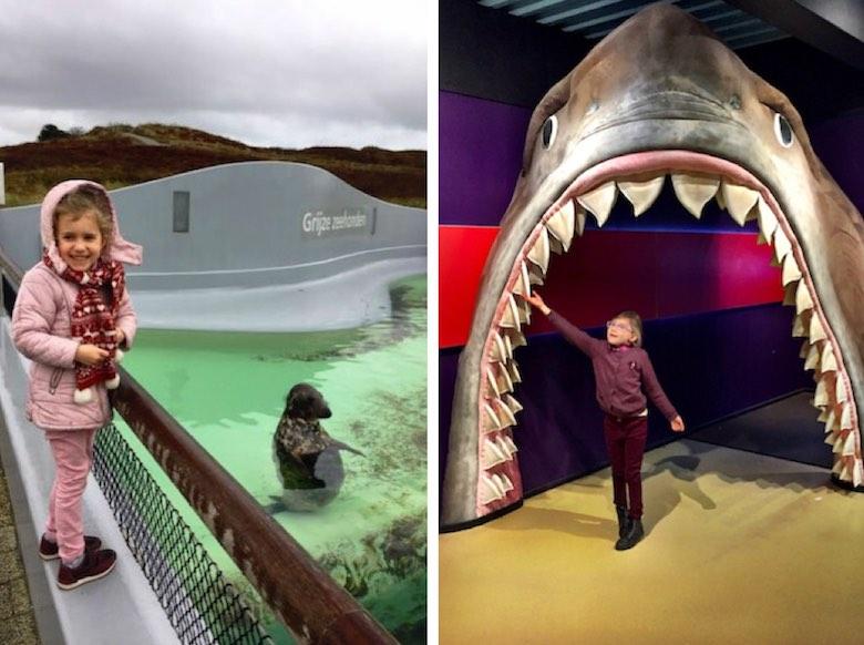De foto aan de linkerzijde toont een meisje dat lachend poseert met een zeehond terwijl de foto aan de rechterzijde een meisje toont dat voelt aan de tanden van een pluchen reuzehaai die als toegang fungeert in Ecomare op het Nederlandse Waddeneiland Texel