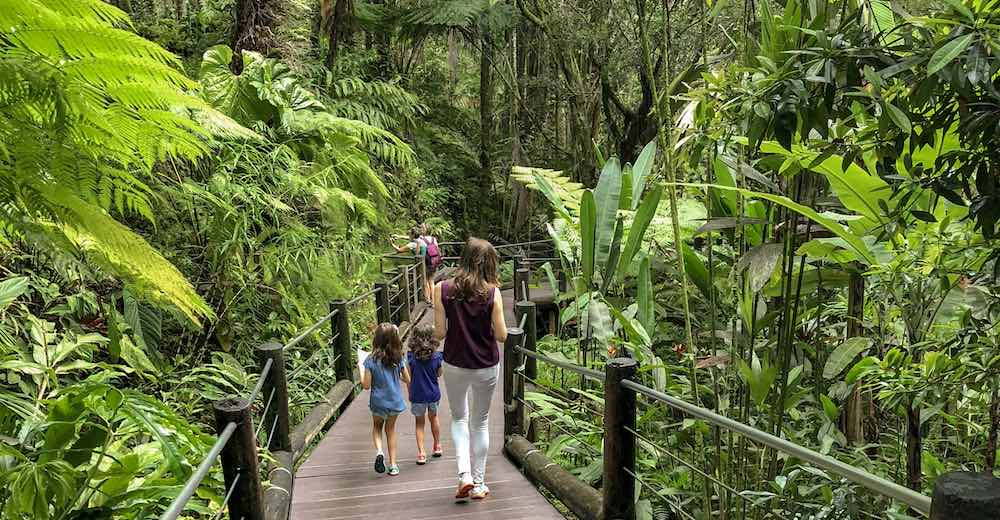 Mother and two kids walking the trail at the Hilo Botanical Gardens, one of the many top things to do in Hilo