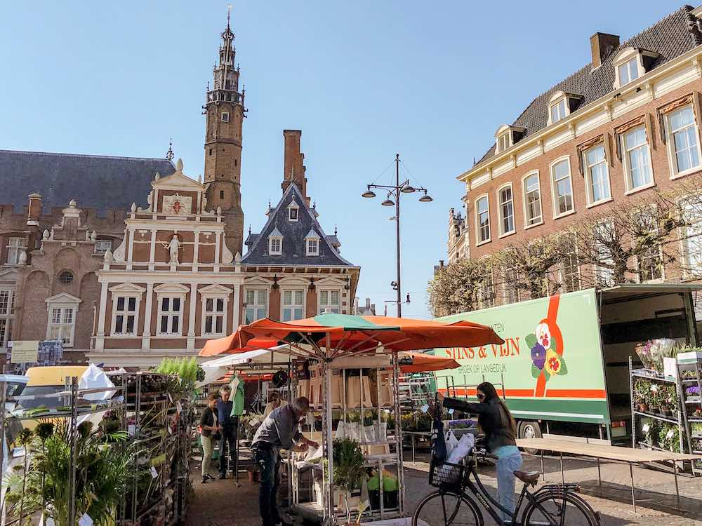 The Grote Markt in Haarlem, where a flower market is being installed, and the city's Town Hall in the backdrop, are some of the best things to visit in Haarlem The Netherlands