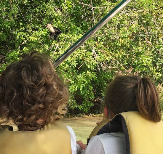 Two little girls looking at howler monkeys on Lake Gatun in Panama