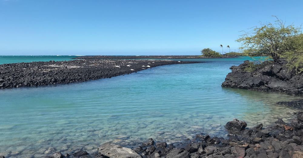 Kiholo Bay is one of the most unique lagoon beaches on Big Island