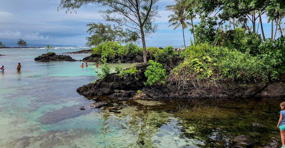 Carlsmith beach park is one of the best big island beaches to spot turtles
