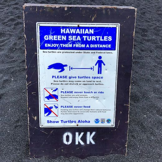 Some popular Big Island beaches make visitors aware to admire the turtles from a distance