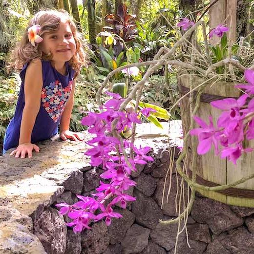 Best Hawaiian island for family vacation with a tropical touch is Big Island
