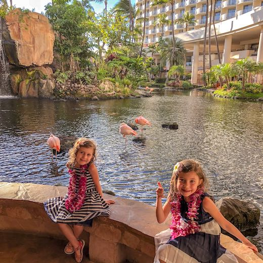 Two girls with resident flamingos at the Westin Maui Resort