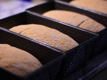 What's Wrong with my Bread!? | A Yeast Bread Troubleshooting Guide from Cosmopolitan Cornbread
