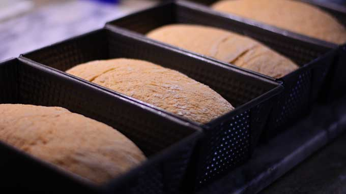 What's Wrong with my Bread!? | A Yeast Bread Troubleshooting Guide