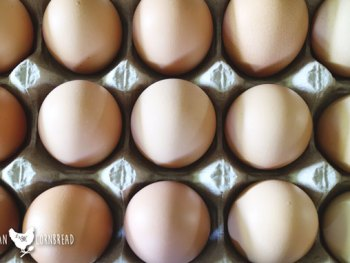 How to Store Farm Eggs   Washed or unwashed, refrigerator or pantry? What's the best way to store farm eggs to make them last the longest?   Cosmopolitan Cornbread