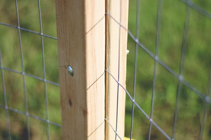 How to Make an Amish Fence Puller - a simple yet priceless tool for putting in a nice, tight fence. Find out how from Cosmopolitan Cornbread
