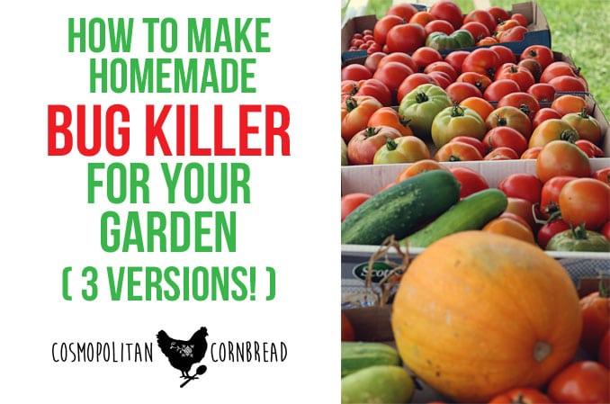 How to Make Homemade Bug Killer for the Garden (3 Versions!)