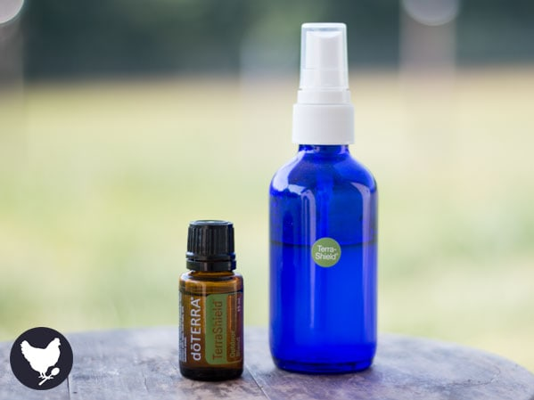 How to Make Natural Insect Repellent | Cosmopolitan Cornbread