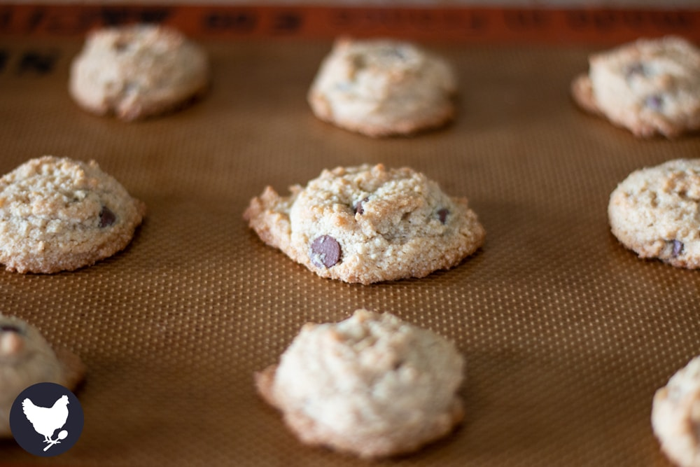 How to make chocolate chip cookies that are both paleo/low-carb and delicious!