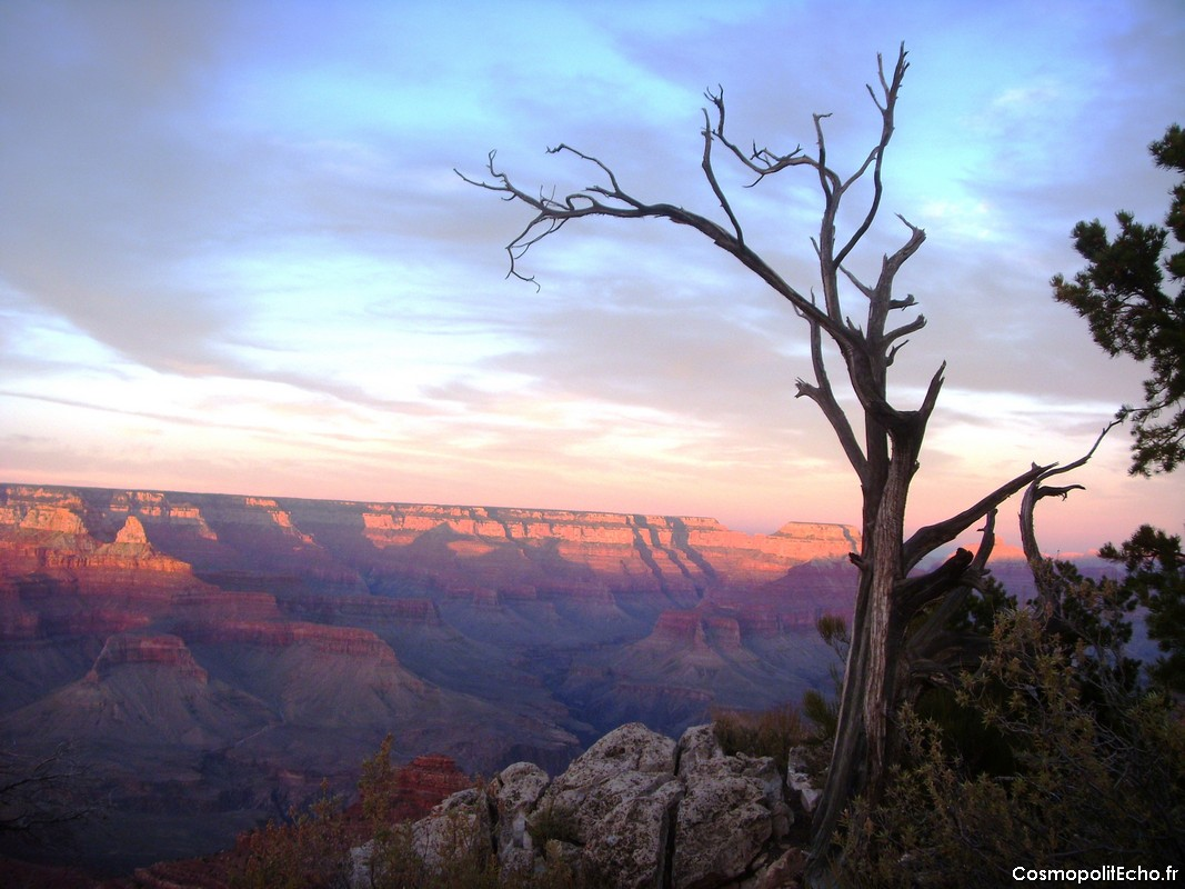 grand canyon road trip arizona ouest parcs nationaux