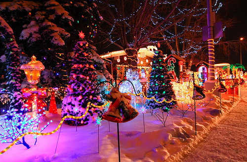 Cheyenne Mountain Zoo Lights