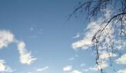 sky pic_ louisa_catlover