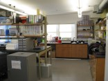 Our shiny new lab space at the Northeastern MSC! So many shelves and drawers and windows!