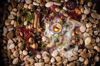 Ouriço do mar, pontilha, carabineiro e zanburinha