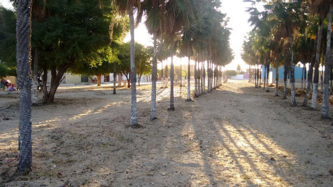 Mutirão de limpeza na praça do Salinópolis