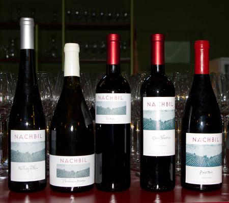 Producătorul de vinuri Purcari din Republica Moldova va achiziționa Cramele Huși din România