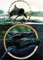 Françoise Jabour, pintor francés: Moby Dick.