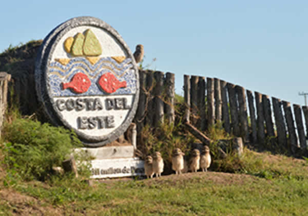 Escudo de Costa del Este