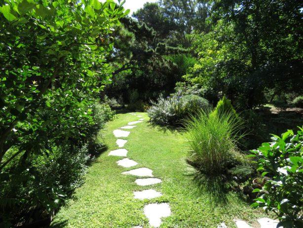 Jardín en Costa del Este